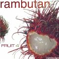 Fruit 4 - Rambutan